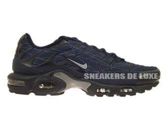 647315-400 Nike Air Max Plus TN 1 Obsidian/Cool Grey